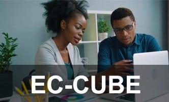 Instalador instalação como instalar EC-CUBE